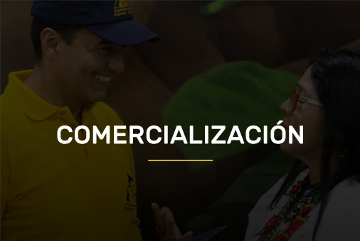 comercializacion-new-over