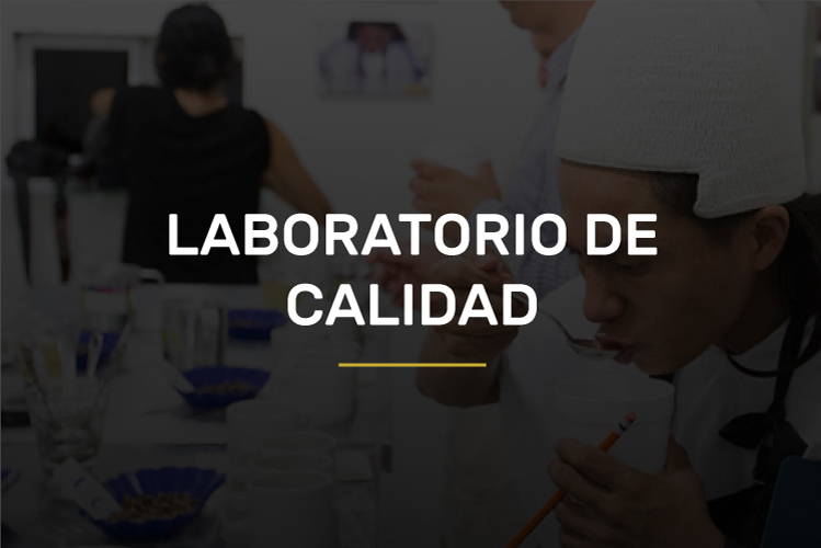 laboratorio-de-calidad-new-over