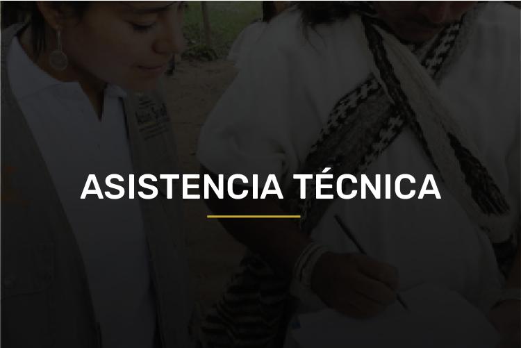 asistencia tecnica